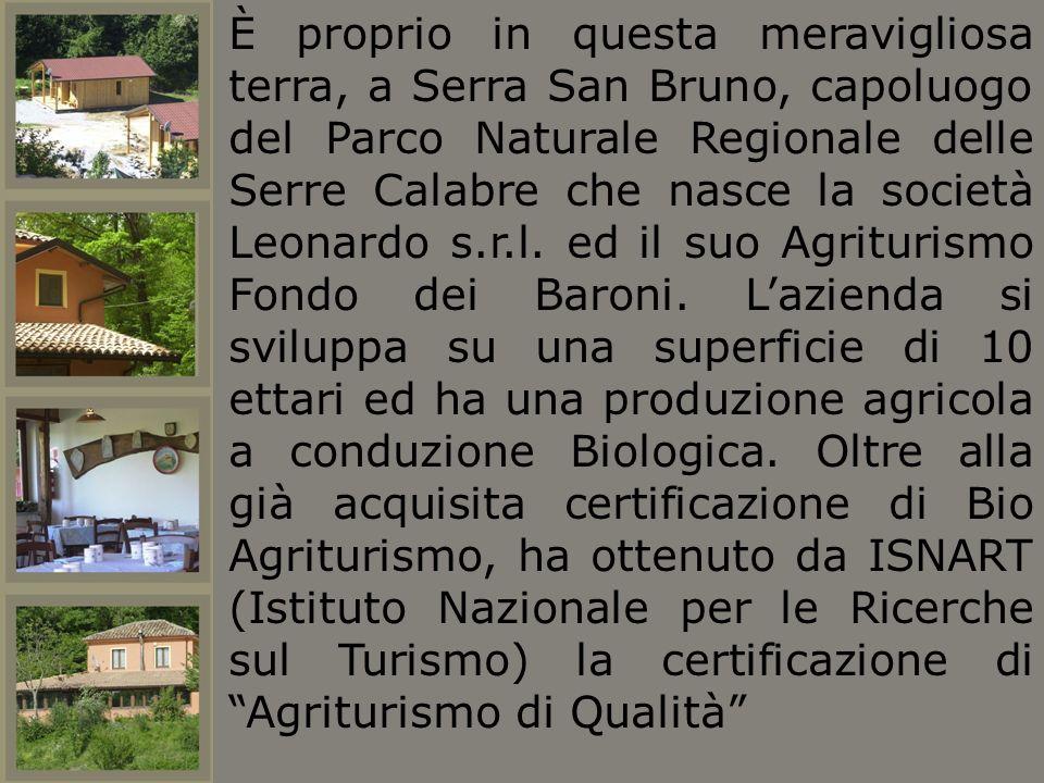 È proprio in questa meravigliosa terra, a Serra San Bruno, capoluogo del Parco Naturale Regionale delle Serre Calabre che nasce la società Leonardo s.