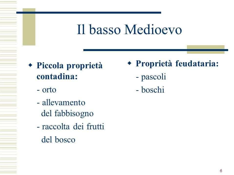 6 Il basso Medioevo Piccola proprietà contadina: - orto - allevamento del fabbisogno - raccolta dei frutti del bosco Proprietà feudataria: - pascoli -