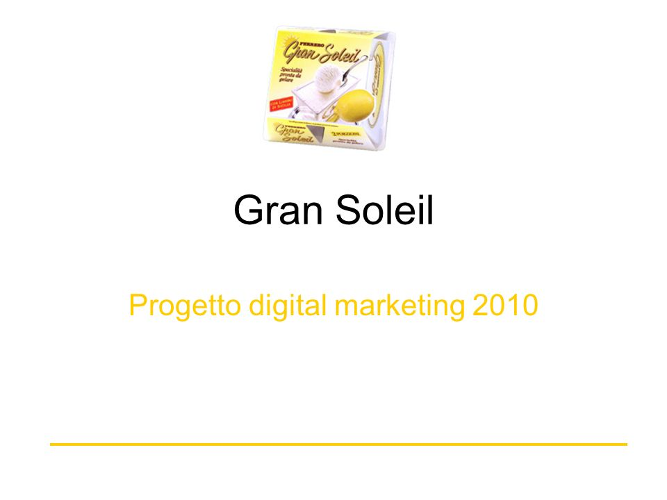 Gran Soleil Progetto digital marketing 2010