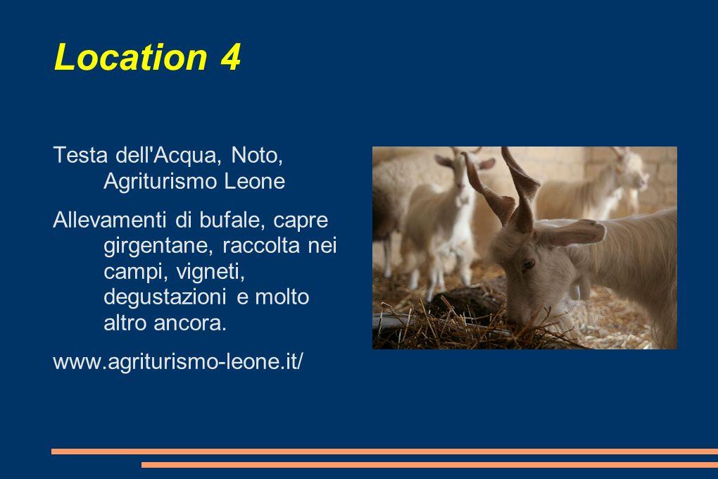 Location 4 Testa dell'Acqua, Noto, Agriturismo Leone Allevamenti di bufale, capre girgentane, raccolta nei campi, vigneti, degustazioni e molto altro