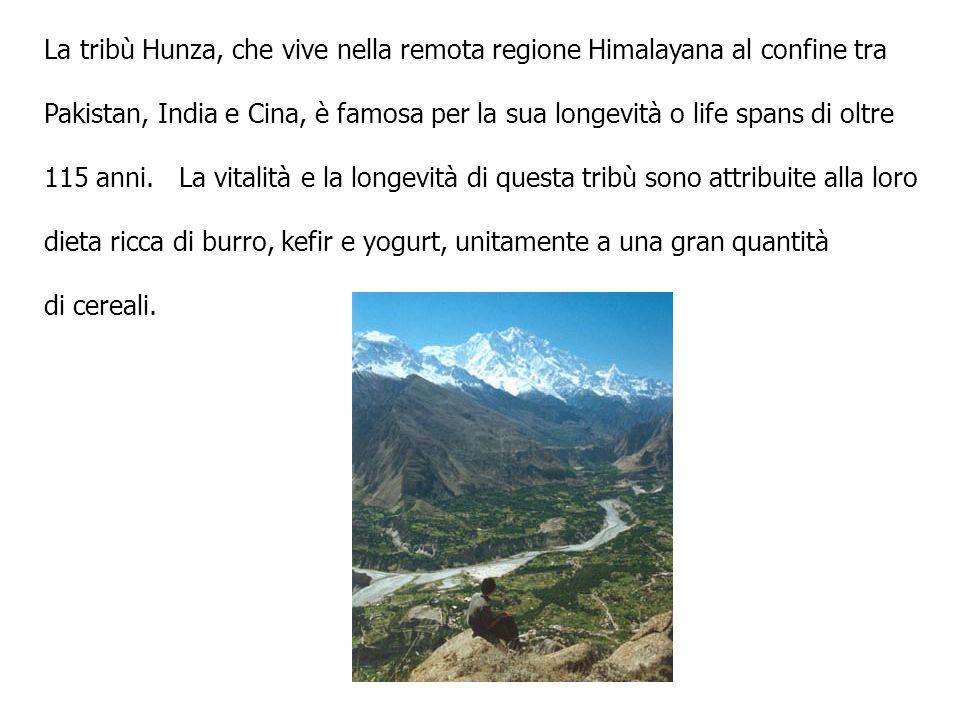 In Italia, e in particolare nella mia Regione Friuli Venezia Giulia, il Ghee, lessenza del Burro, è chiamato da sempre ONT.