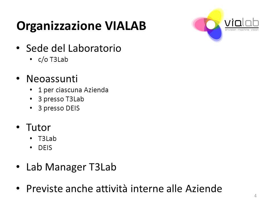 Organizzazione VIALAB Sede del Laboratorio c/o T3Lab Neoassunti 1 per ciascuna Azienda 3 presso T3Lab 3 presso DEIS Tutor T3Lab DEIS Lab Manager T3Lab