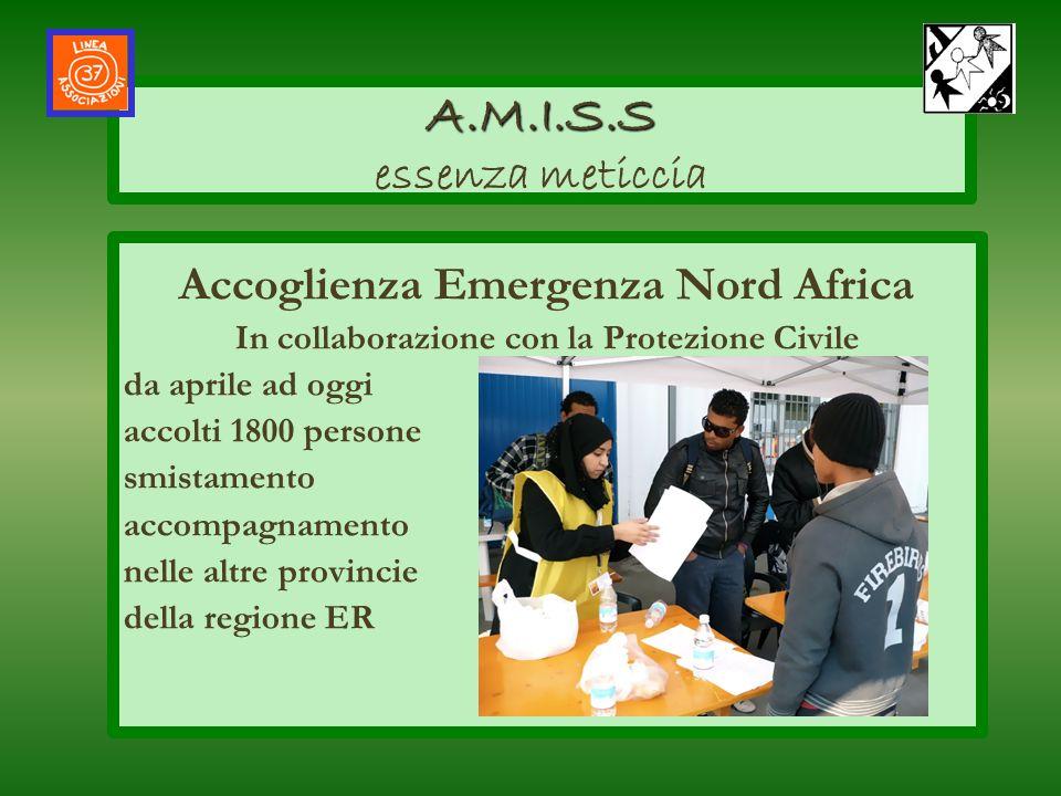 Accoglienza Emergenza Nord Africa In collaborazione con la Protezione Civile da aprile ad oggi accolti 1800 persone smistamento accompagnamento nelle
