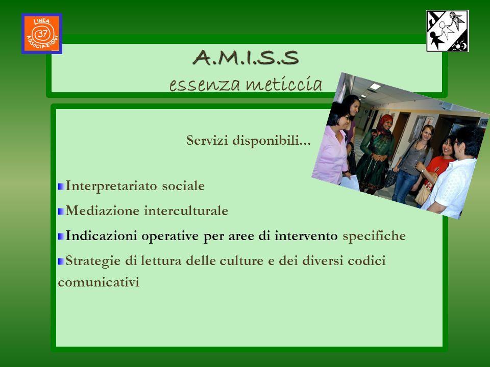 AMISS Servizi disponibili... Interpretariato sociale Mediazione interculturale Indicazioni operative per aree di intervento specifiche Strategie di le