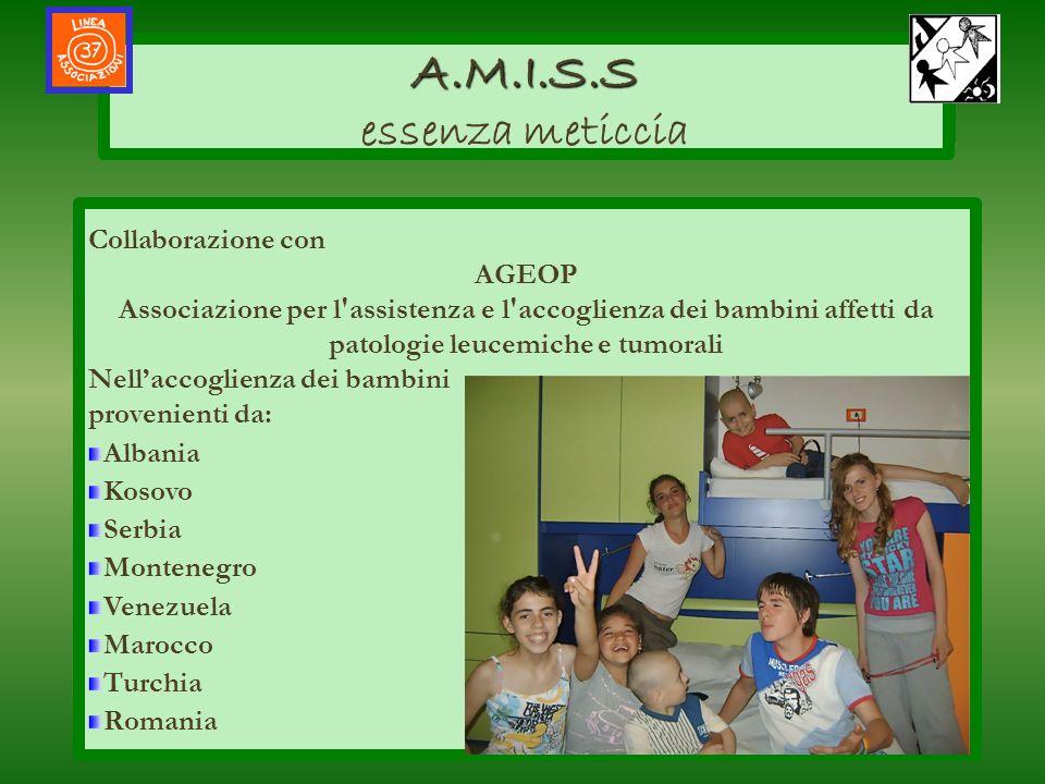 AMISS A.M.I.S.S A.M.I.S.S essenza meticcia salute allinterno delle loro comunità Collaborazione con AGEOP Associazione per l'assistenza e l'accoglienz
