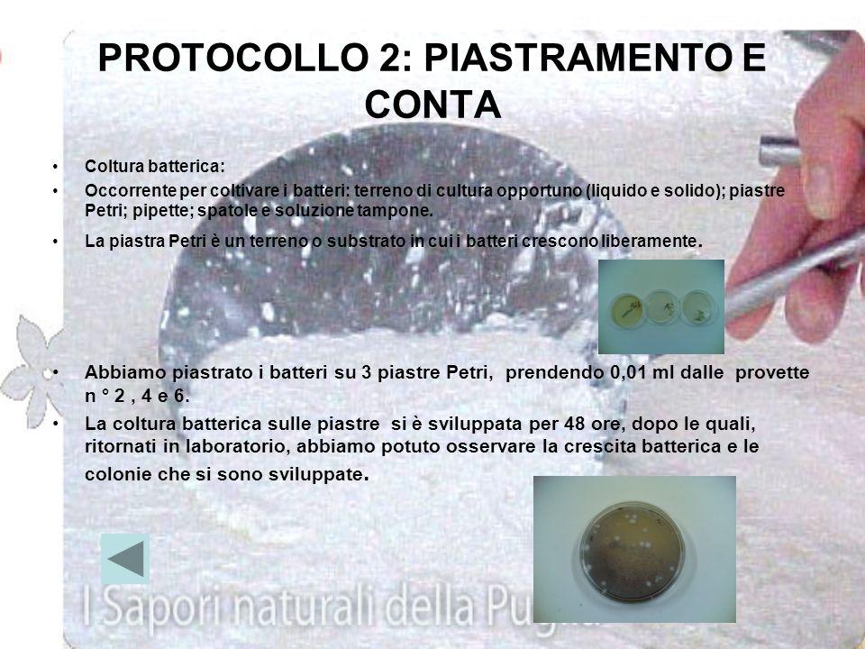 Protocollo 1: metodo delle diluizioni seriali Materiali: prendere un vasetto con dei batteri (yogurt ecc), 1 pipetta, 6 provette, 1 porta provette da