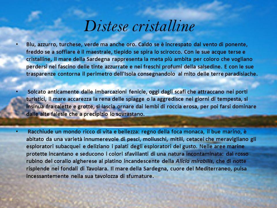 Aree marine protette Distribuite lungo il profilo costiero della Sardegna, le aree marine protette sono disciplinate da regolamentazioni di tutela del patrimonio naturalistico, annoverate fra i siti di interesse comunitario e conservano integro un ecosistema da esplorare e scoprire.