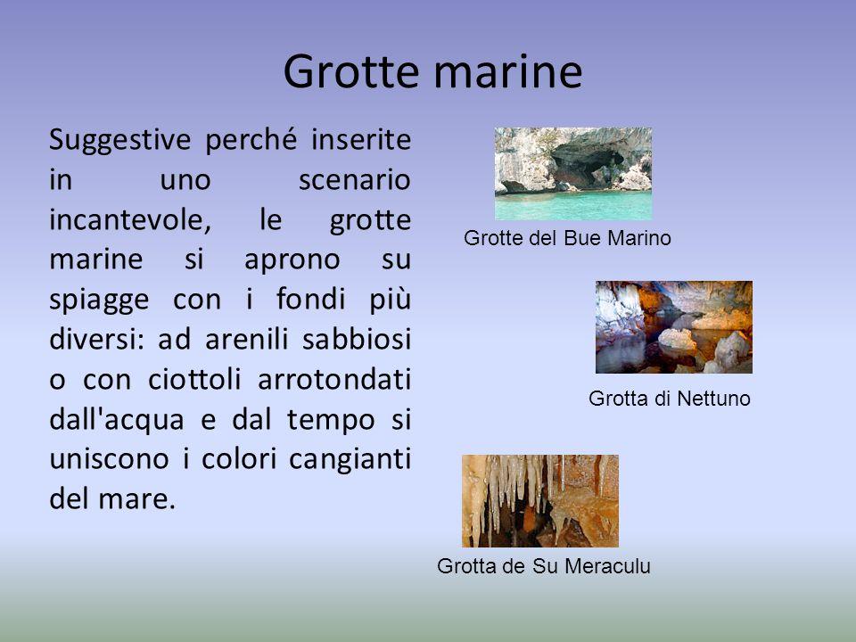 Grotte marine Suggestive perché inserite in uno scenario incantevole, le grotte marine si aprono su spiagge con i fondi più diversi: ad arenili sabbio