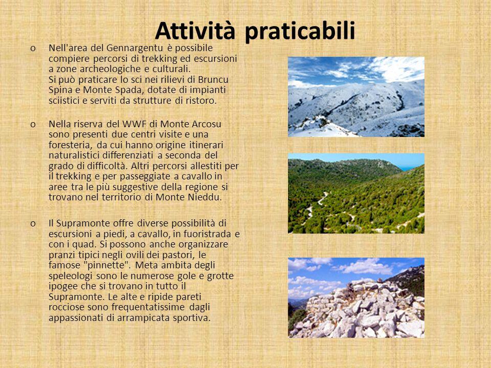Attività praticabili oNell'area del Gennargentu è possibile compiere percorsi di trekking ed escursioni a zone archeologiche e culturali. Si può prati