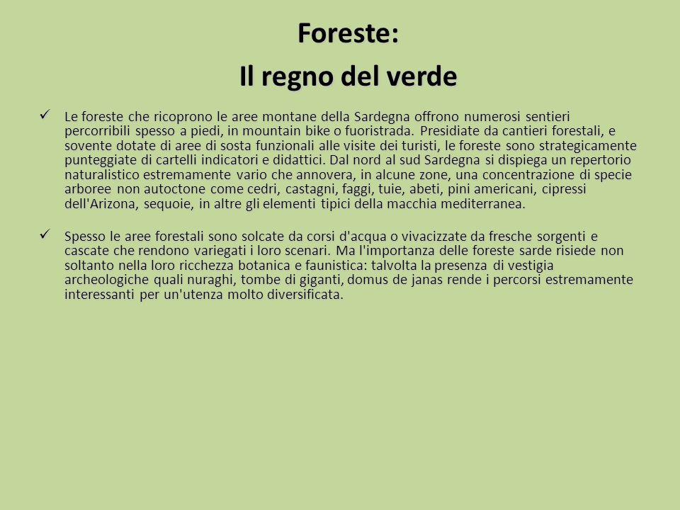Foreste: Il regno del verde Le foreste che ricoprono le aree montane della Sardegna offrono numerosi sentieri percorribili spesso a piedi, in mountain
