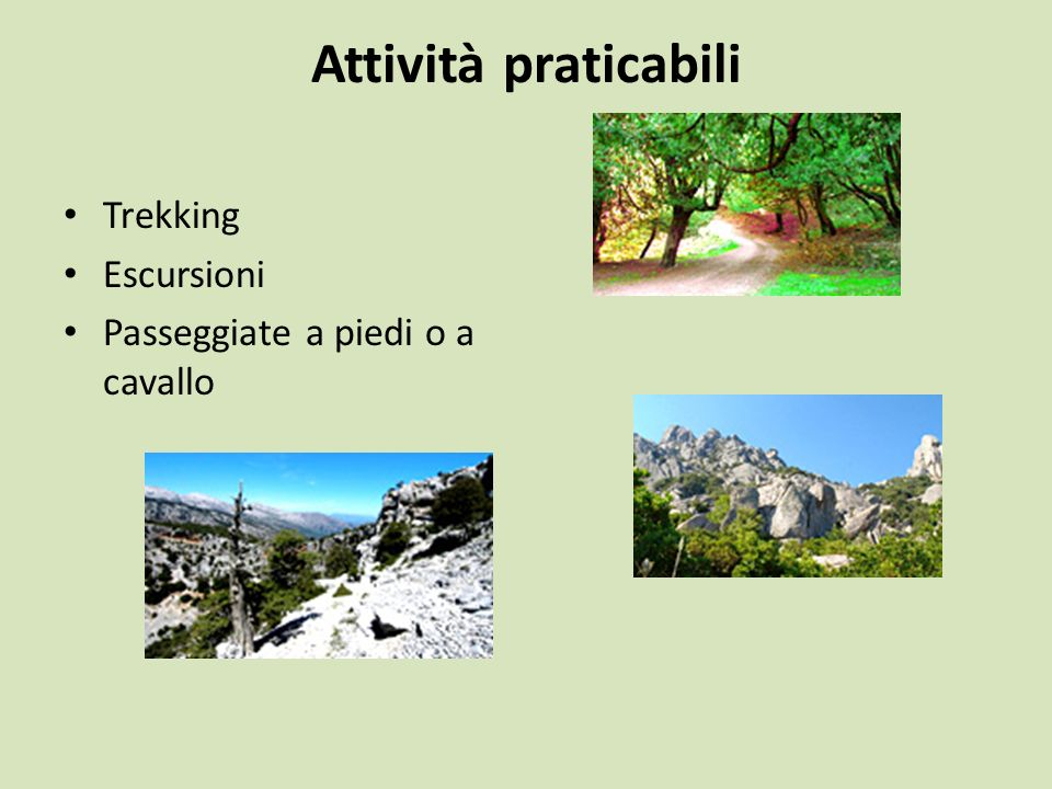 Attività praticabili Trekking Escursioni Passeggiate a piedi o a cavallo