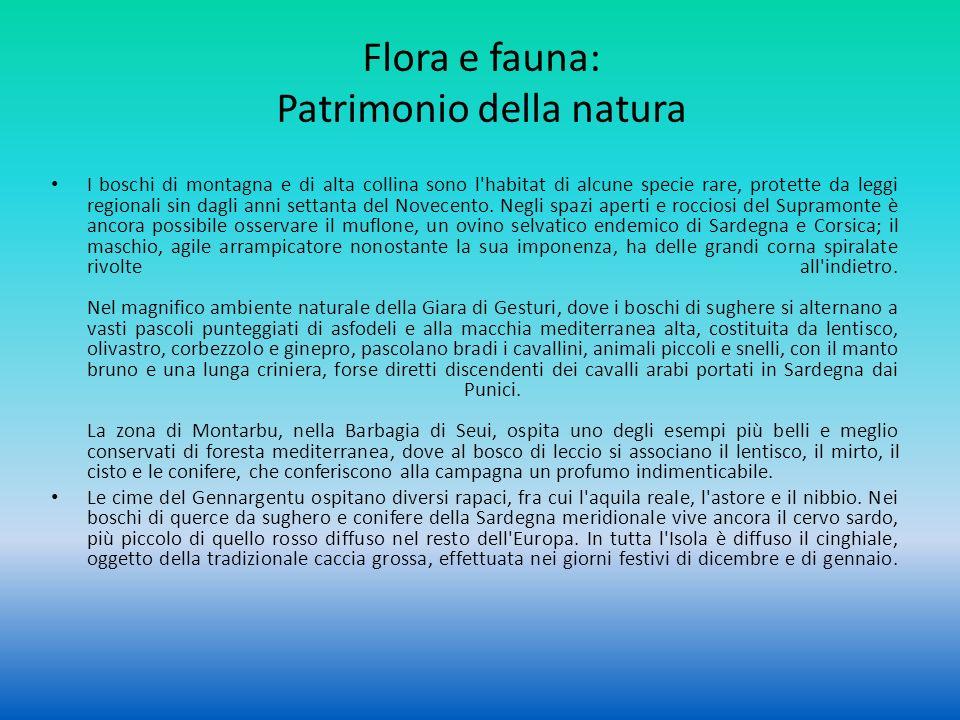 Flora e fauna: Patrimonio della natura I boschi di montagna e di alta collina sono l'habitat di alcune specie rare, protette da leggi regionali sin da