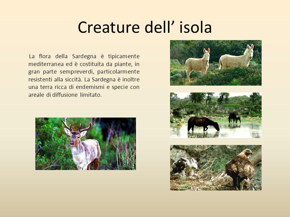 Creature dell isola La flora della Sardegna è tipicamente mediterranea ed è costituita da piante, in gran parte sempreverdi, particolarmente resistent