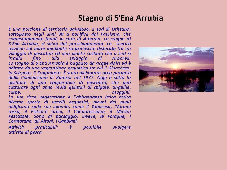 Stagno di S'Ena Arrubia È una porzione di territorio paludoso, a sud di Oristano, sottoposto negli anni 30 a bonifica dal Fascismo, che contestualment