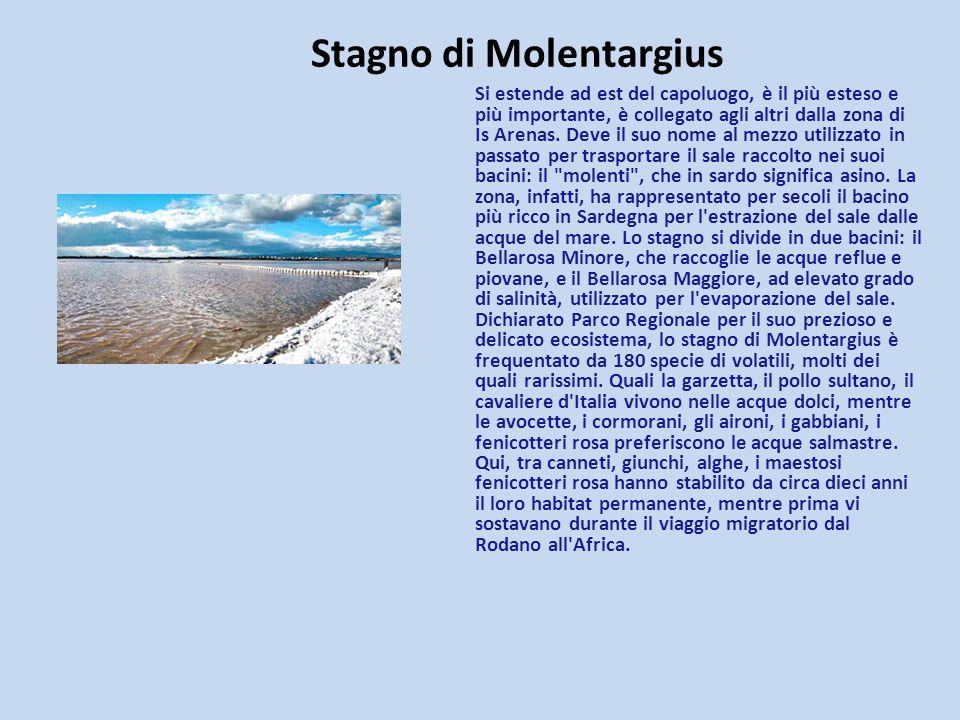 Stagno di Molentargius Si estende ad est del capoluogo, è il più esteso e più importante, è collegato agli altri dalla zona di Is Arenas. Deve il suo