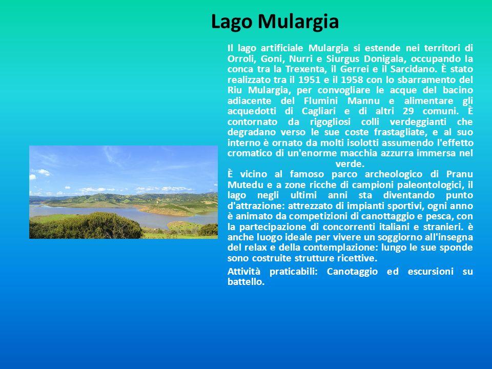 Lago Mulargia Il lago artificiale Mulargia si estende nei territori di Orroli, Goni, Nurri e Siurgus Donigala, occupando la conca tra la Trexenta, il