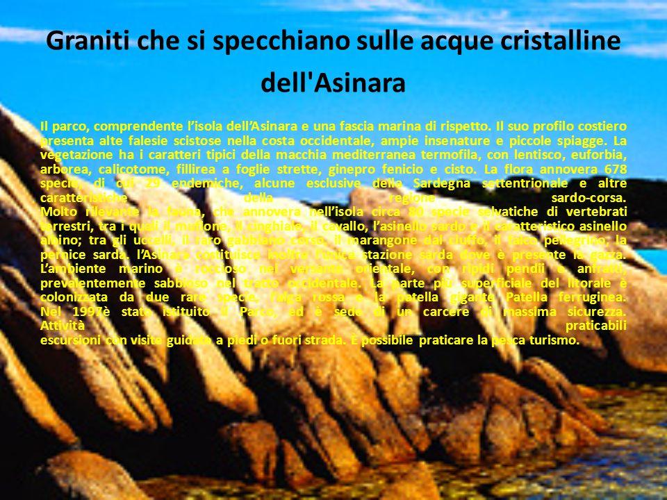 Graniti che si specchiano sulle acque cristalline dell'Asinara Il parco, comprendente lisola dellAsinara e una fascia marina di rispetto. Il suo profi