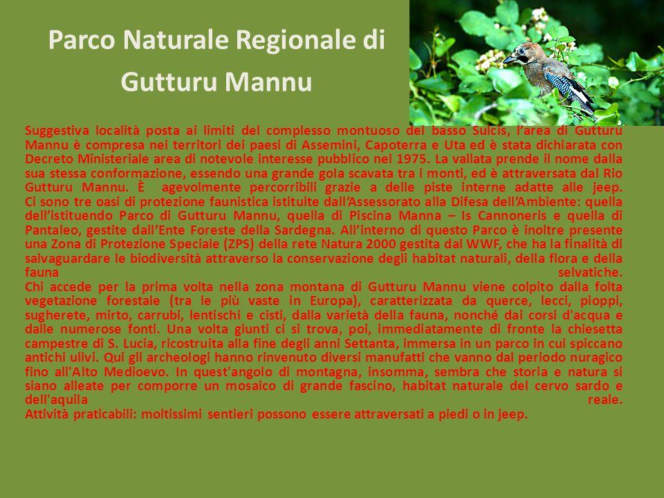 Parco Naturale Regionale di Gutturu Mannu Suggestiva località posta ai limiti del complesso montuoso del basso Sulcis, larea di Gutturu Mannu è compre