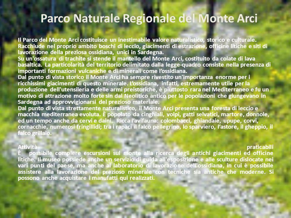 Parco Naturale Regionale del Monte Arci Il Parco del Monte Arci costituisce un inestimabile valore naturalistico, storico e culturale. Racchiude nel p