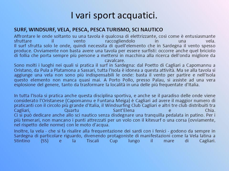 I vari sport acquatici. SURF, WINDSURF, VELA, PESCA, PESCA TURISMO, SCI NAUTICO Affrontare le onde soltanto su una tavola è qualcosa di elettrizzante,