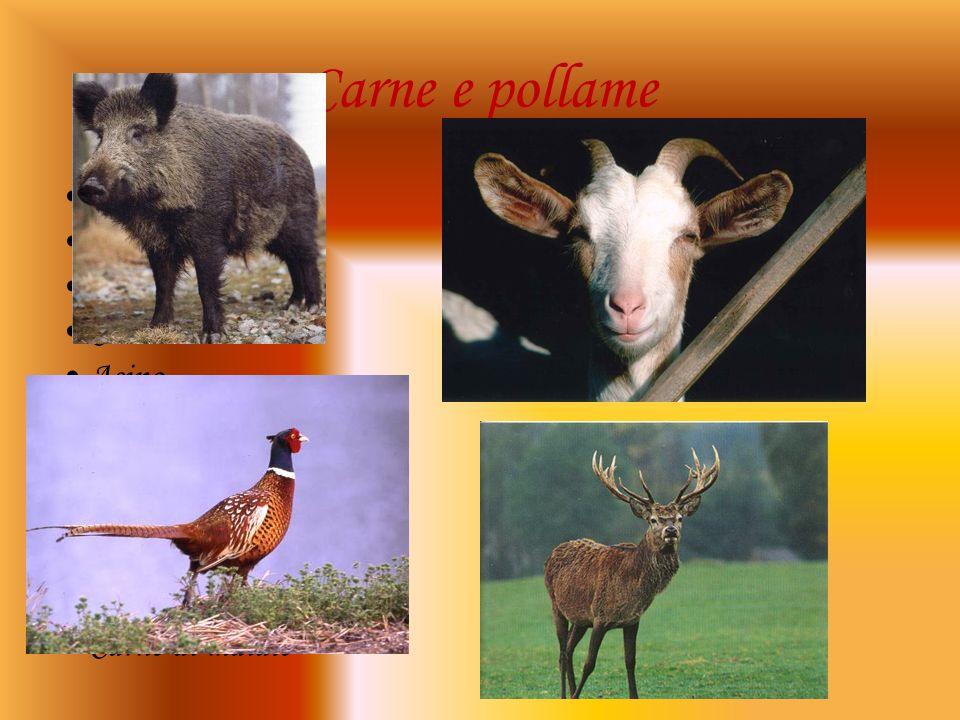 Carne e pollame Uccelli Cinghiale Pollo Cervo Asino Capra Oca Lepre Agnello Fagiano Carne di maiale