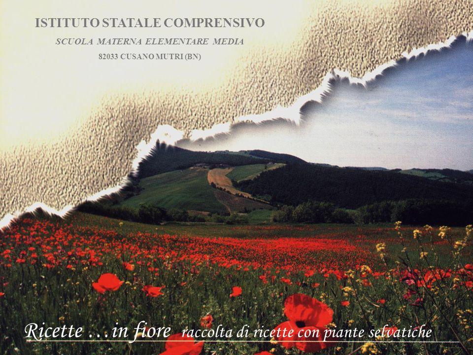 ISTITUTO STATALE COMPRENSIVO SCUOLA MATERNA ELEMENTARE MEDIA 82033 CUSANO MUTRI (BN) Ricette …in fiore raccolta di ricette con piante selvatiche