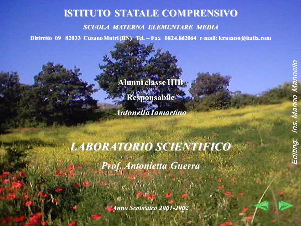 Alunni classe IIIB Responsabile Antonella Iamartino LABORATORIO SCIENTIFICO Prof. Antonietta Guerra Anno Scolastico 2001-2002 ISTITUTO STATALE COMPREN