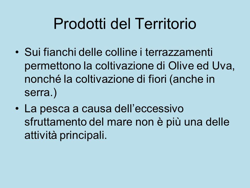 Prodotti del Territorio Sui fianchi delle colline i terrazzamenti permettono la coltivazione di Olive ed Uva, nonché la coltivazione di fiori (anche in serra.) La pesca a causa delleccessivo sfruttamento del mare non è più una delle attività principali.