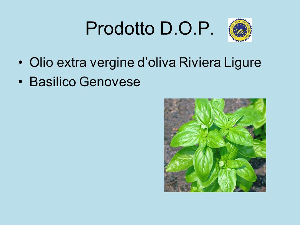 Prodotto D.O.P. Olio extra vergine doliva Riviera Ligure Basilico Genovese