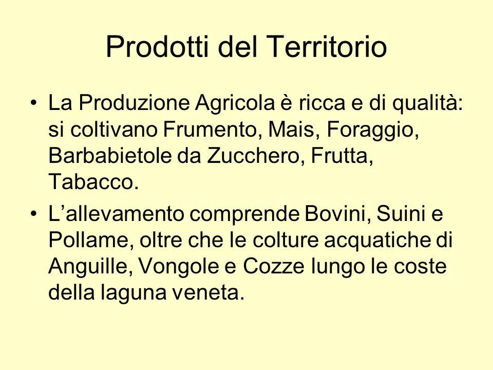 Prodotti del Territorio La Produzione Agricola è ricca e di qualità: si coltivano Frumento, Mais, Foraggio, Barbabietole da Zucchero, Frutta, Tabacco.