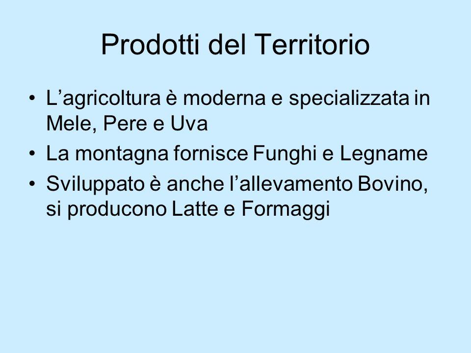 Prodotti del Territorio Lagricoltura è moderna e specializzata in Mele, Pere e Uva La montagna fornisce Funghi e Legname Sviluppato è anche lallevamento Bovino, si producono Latte e Formaggi
