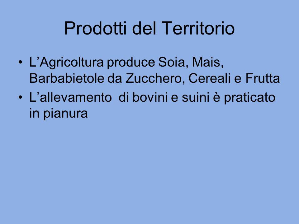 Prodotti del Territorio LAgricoltura produce Soia, Mais, Barbabietole da Zucchero, Cereali e Frutta Lallevamento di bovini e suini è praticato in pianura