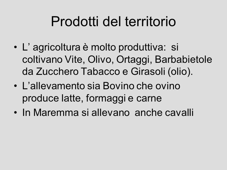 Prodotti del territorio L agricoltura è molto produttiva: si coltivano Vite, Olivo, Ortaggi, Barbabietole da Zucchero Tabacco e Girasoli (olio). Lalle