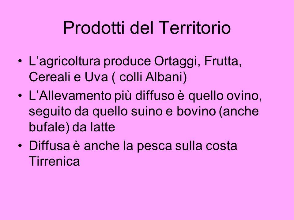 Prodotti del Territorio Lagricoltura produce Ortaggi, Frutta, Cereali e Uva ( colli Albani) LAllevamento più diffuso è quello ovino, seguito da quello suino e bovino (anche bufale) da latte Diffusa è anche la pesca sulla costa Tirrenica