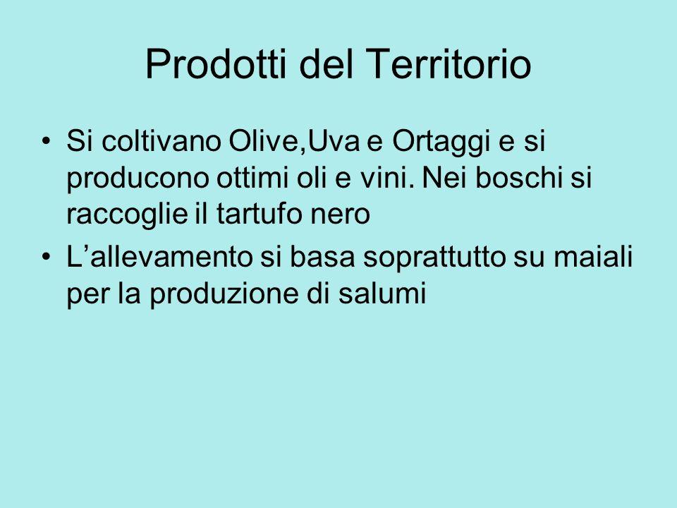 Prodotti del Territorio Si coltivano Olive,Uva e Ortaggi e si producono ottimi oli e vini. Nei boschi si raccoglie il tartufo nero Lallevamento si bas