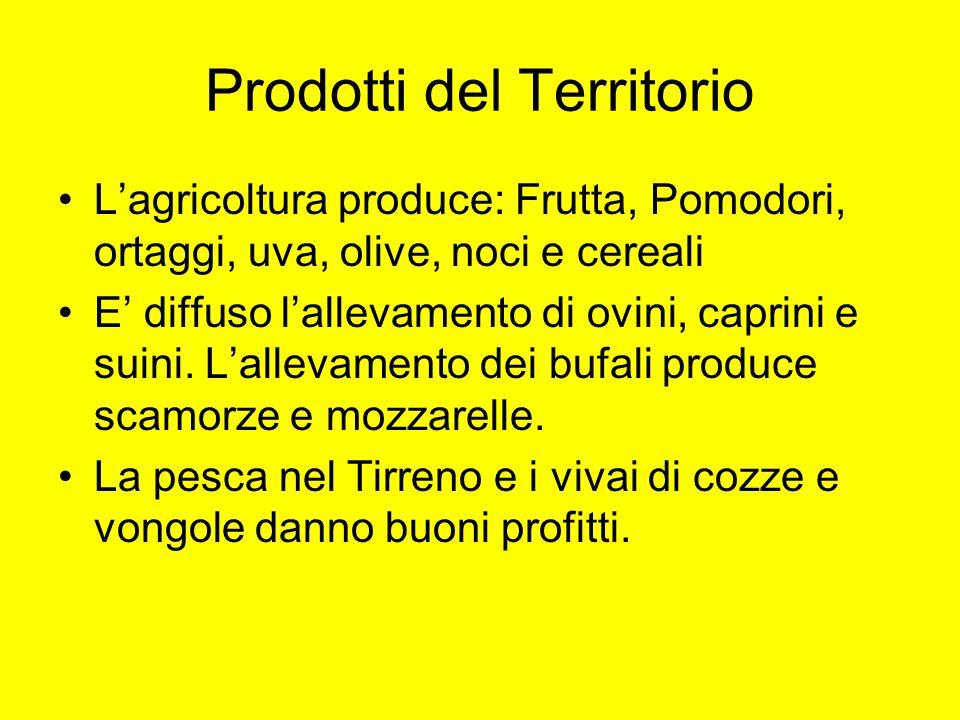 Prodotti del Territorio Lagricoltura produce: Frutta, Pomodori, ortaggi, uva, olive, noci e cereali E diffuso lallevamento di ovini, caprini e suini.