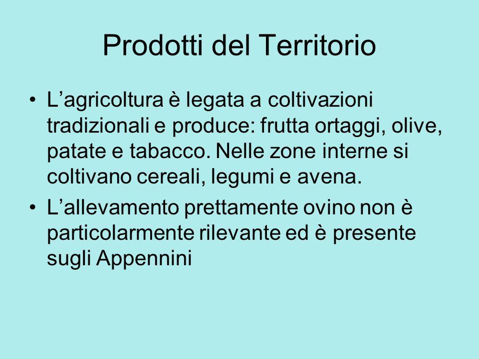 Prodotti del Territorio Lagricoltura è legata a coltivazioni tradizionali e produce: frutta ortaggi, olive, patate e tabacco. Nelle zone interne si co
