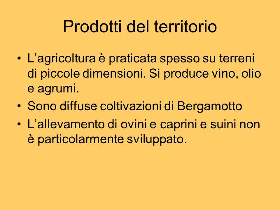 Prodotti del territorio Lagricoltura è praticata spesso su terreni di piccole dimensioni. Si produce vino, olio e agrumi. Sono diffuse coltivazioni di