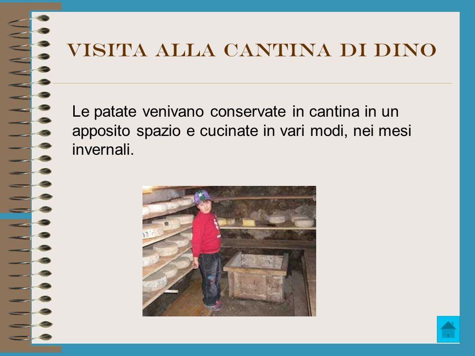 Visita alla cantina di Dino Le patate venivano conservate in cantina in un apposito spazio e cucinate in vari modi, nei mesi invernali.
