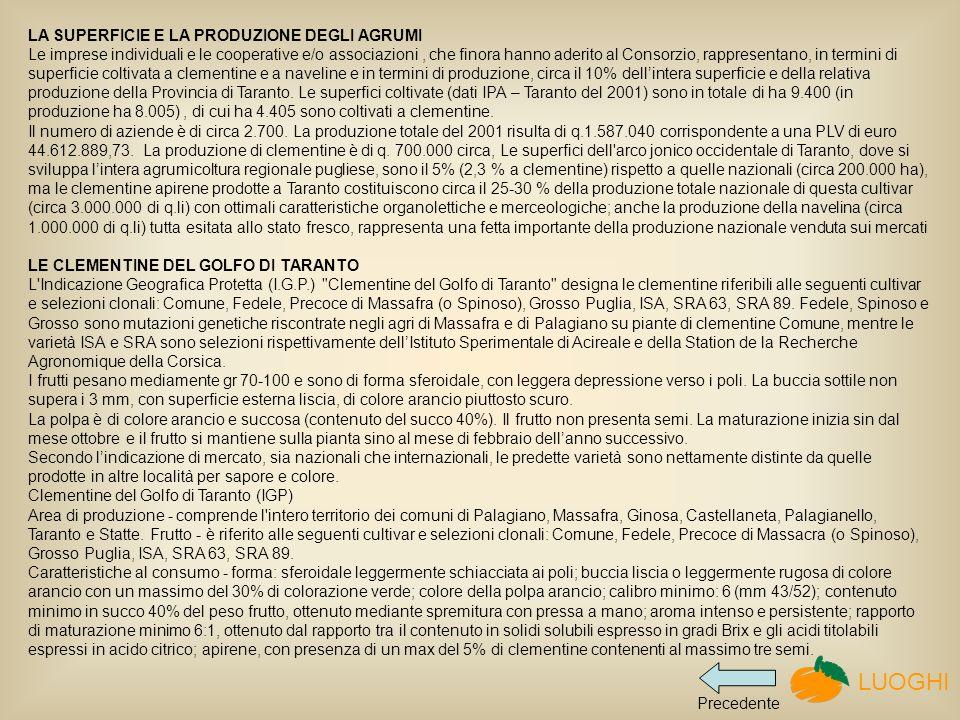LA SUPERFICIE E LA PRODUZIONE DEGLI AGRUMI Le imprese individuali e le cooperative e/o associazioni, che finora hanno aderito al Consorzio, rappresentano, in termini di superficie coltivata a clementine e a naveline e in termini di produzione, circa il 10% dellintera superficie e della relativa produzione della Provincia di Taranto.