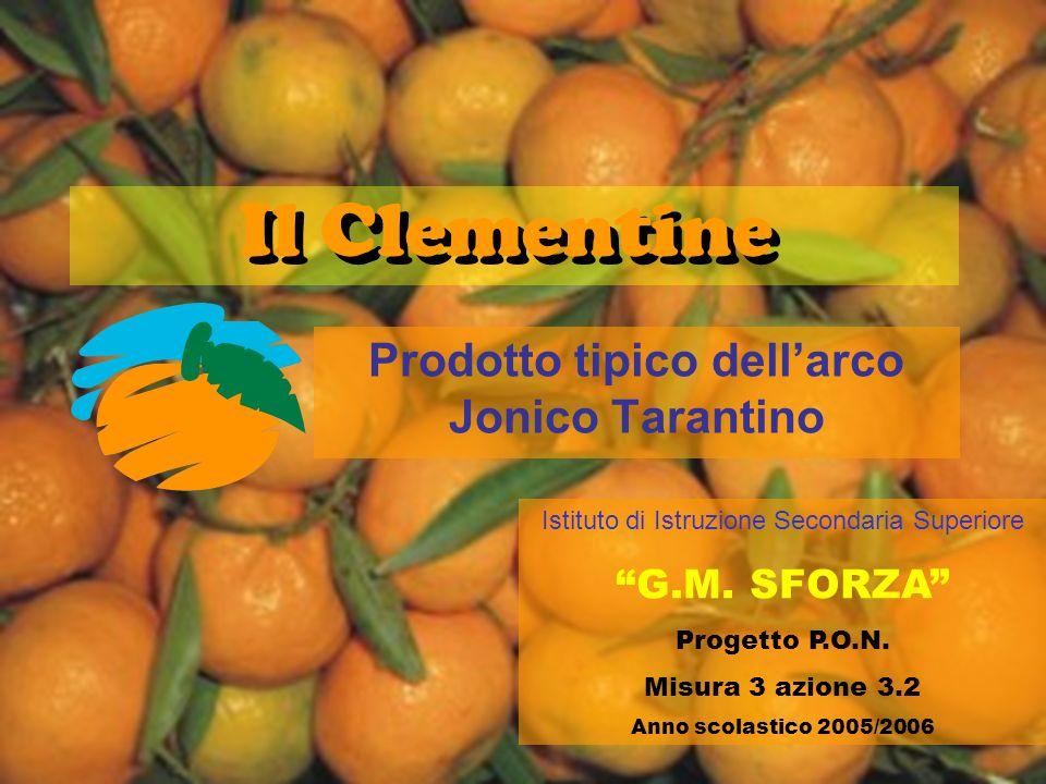 Il Clementine Prodotto tipico dellarco Jonico Tarantino Istituto di Istruzione Secondaria Superiore G.M. SFORZA Progetto P.O.N. Misura 3 azione 3.2 An