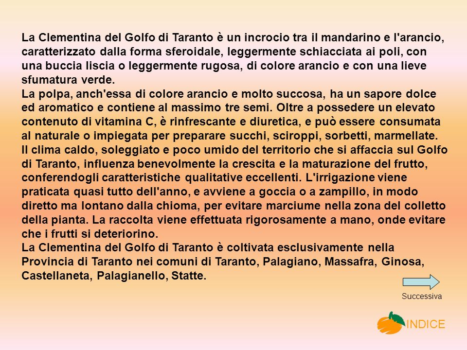 La Clementina del Golfo di Taranto è un incrocio tra il mandarino e l arancio, caratterizzato dalla forma sferoidale, leggermente schiacciata ai poli, con una buccia liscia o leggermente rugosa, di colore arancio e con una lieve sfumatura verde.