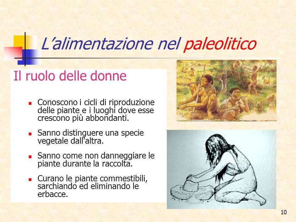 10 Lalimentazione nel paleolitico Il ruolo delle donne Conoscono i cicli di riproduzione delle piante e i luoghi dove esse crescono più abbondanti. Sa