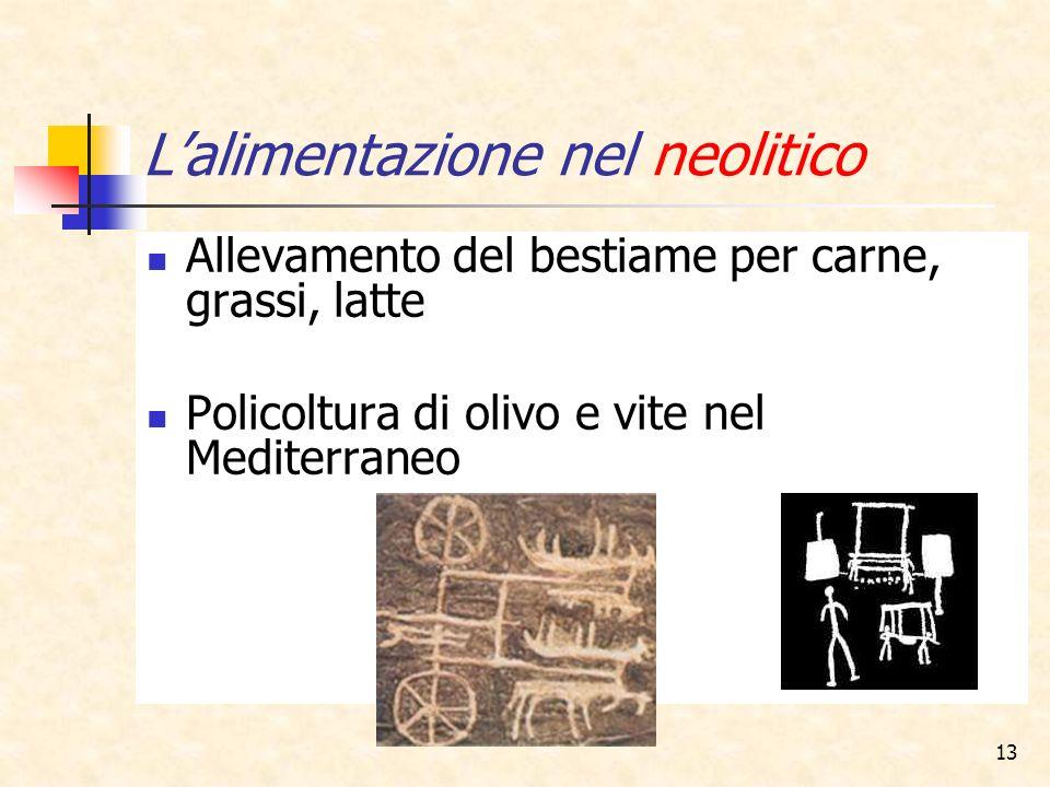13 Lalimentazione nel neolitico Allevamento del bestiame per carne, grassi, latte Policoltura di olivo e vite nel Mediterraneo