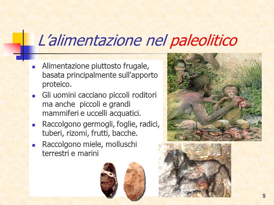 9 Lalimentazione nel paleolitico Alimentazione piuttosto frugale, basata principalmente sull'apporto proteico. Gli uomini cacciano piccoli roditori ma