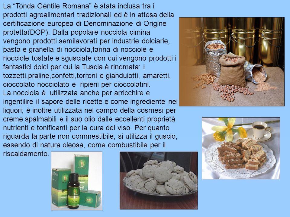 La Tonda Gentile Romana è stata inclusa tra i prodotti agroalimentari tradizionali ed è in attesa della certificazione europea di Denominazione di Ori