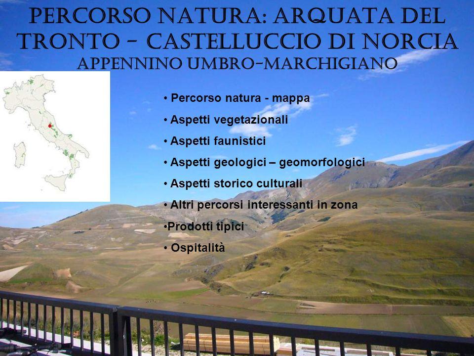 Oggi i Monti Sibillini offrono al naturalista il tipico ambiente dellalto Appennino calcareo, plasmato dal carsismo, che alterna altopiani, pareti rocciose, doline, inghiottitoi, crinali erbosi e ghiaiosi.