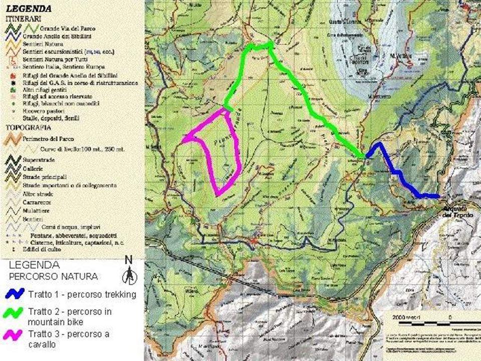 Arquata del Tronto e la sua storia ASPETTI STORICO CULTURALI Arquata del Tronto sorge a 777 m.l.m.