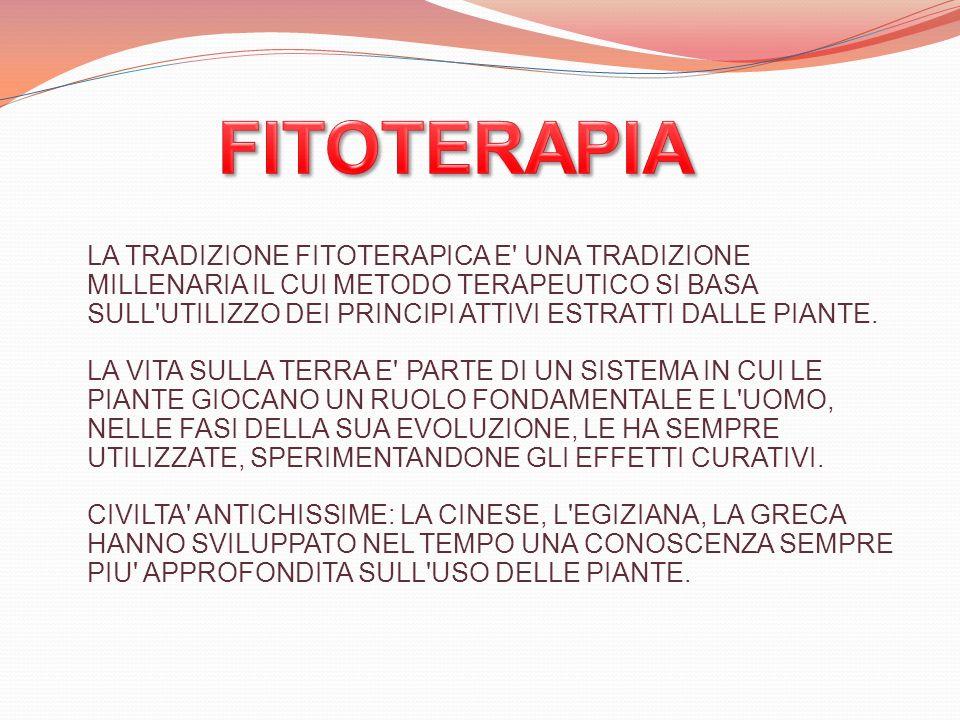UNO STUDIO IN VITRO HA DIMOSTRATO CHE I DERIVATI DELLA 11 ALFA, 13-DIIDROELENALINA, IN PARTICOLARE QUELLI DI TIPO METACRILATO O TIGLINATO, SONO ATTIVI NEL RIDURRE LA TRASCRIZIONE DEI FATTORI NUCLEARI NF- kappaB e NF-AT.