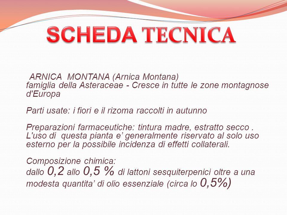 ARNICA MONTANA (Arnica Montana) famiglia della Asteraceae - Cresce in tutte le zone montagnose d'Europa Parti usate: i fiori e il rizoma raccolti in a